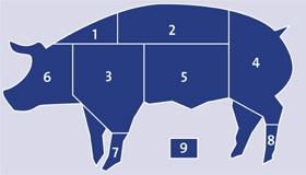cerdo, Cerdo